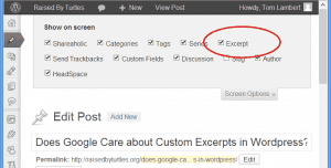 screenshot of wordpress screen options